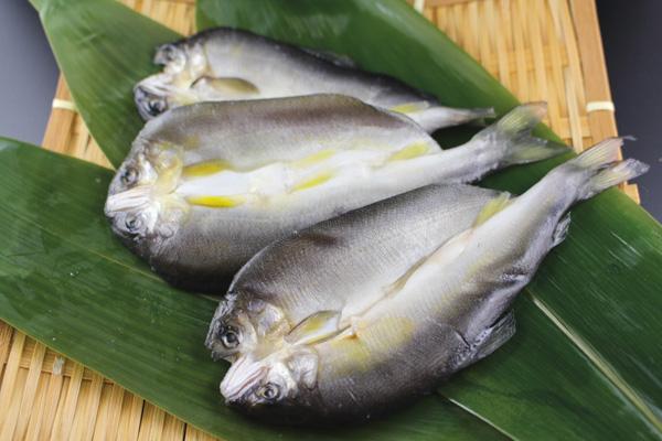 鮎,国内加工,干し魚,開き